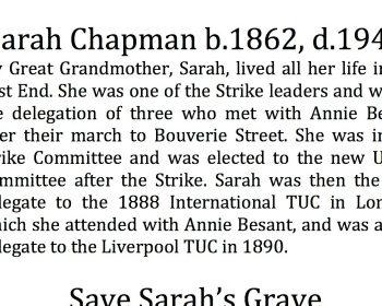Sarah Chapman header