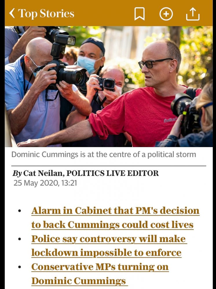 The Cummings comedy in the Daily Telegraph app 25th May 2010