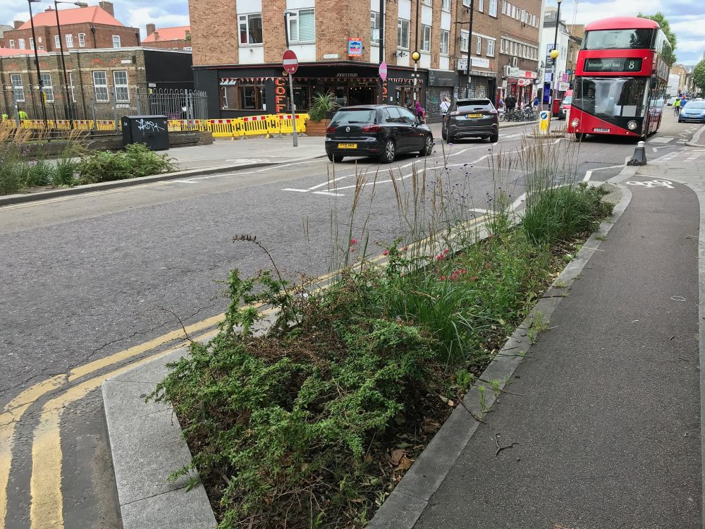 Planting and a cycle lane Roman Road